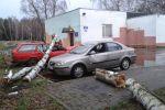 c_150_100_16777215_00_images_all_shtorm-v-baltijskom-more_ksavier_10.jpg